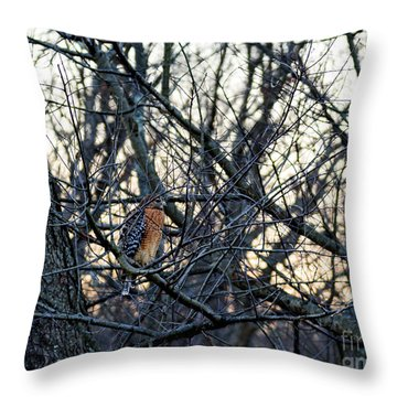 Throw Pillow featuring the photograph Where The Wild Things Are by Sandy Molinaro