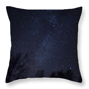 Where The Wind And The Coyotes Howl Throw Pillow