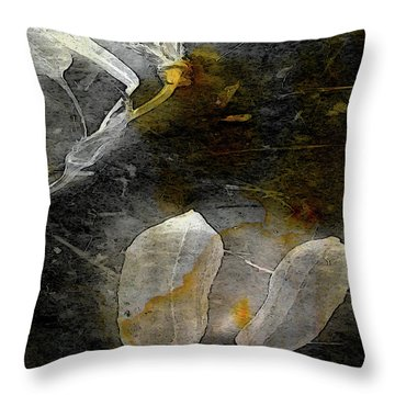 Where There Had Been Light IIi Throw Pillow