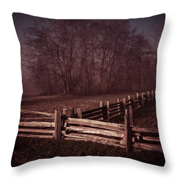 Where They Meet Throw Pillow