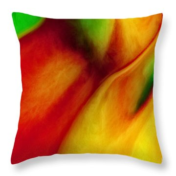 Where Time Stands Still Throw Pillow