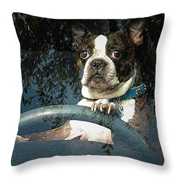 Throw Pillow featuring the photograph Where To James by Kate Word