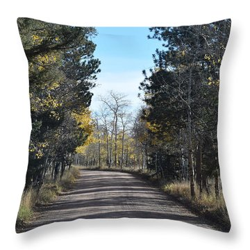 Cr 511 Divide Co Throw Pillow