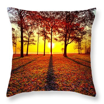 Where You Have Been Is Part Of Your Story Throw Pillow