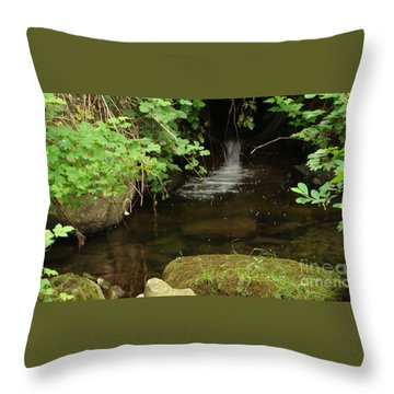 Where's The Fish? Throw Pillow by Rod Jellison