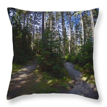 Which Path? Throw Pillow