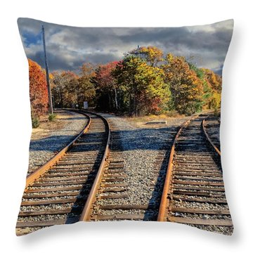 Which Way Throw Pillow by Constantine Gregory