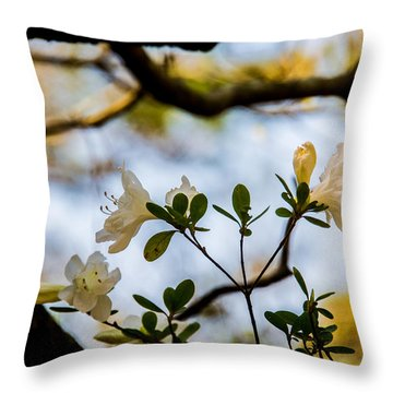 Whie Azaleas Under A Dogwood Tree Throw Pillow
