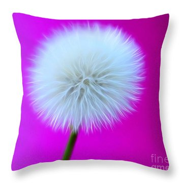 Whimsy Wishes Throw Pillow
