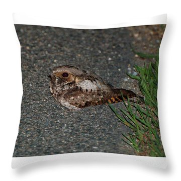 Whip-poor-will Throw Pillow