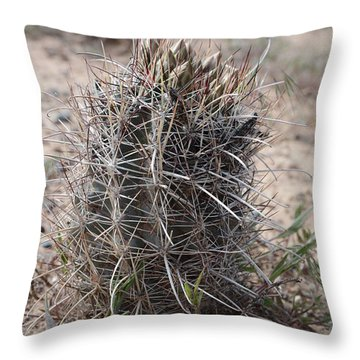 Throw Pillow featuring the photograph Whipple's Fishook Cactus by Jenessa Rahn