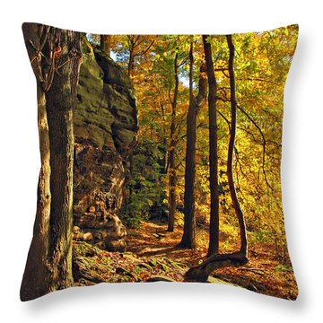 Whipp's Ledges In Autumn Throw Pillow by Joan  Minchak