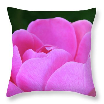 Throw Pillow featuring the photograph Whisper Of The Garden Rose by Johanna Hurmerinta