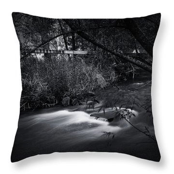 Throw Pillow featuring the photograph Whispering Brooke by Tim Nichols