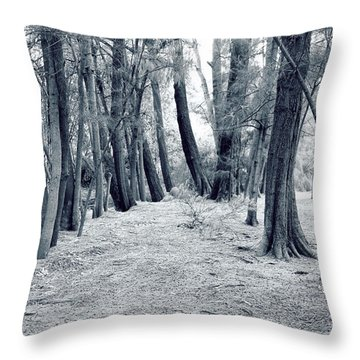 Throw Pillow featuring the photograph Whispering Forest by Wayne Sherriff