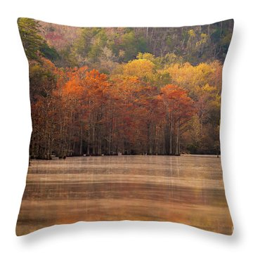 Throw Pillow featuring the photograph Whispering Mist by Iris Greenwell