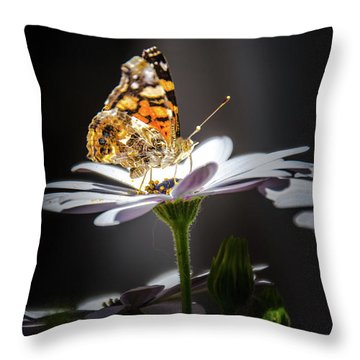 Whispering Wings II Throw Pillow