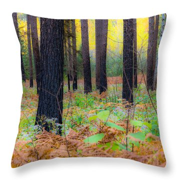 Whispering Woods Throw Pillow by Mary Amerman