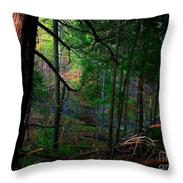 Throw Pillow featuring the photograph Whisperings by Elfriede Fulda