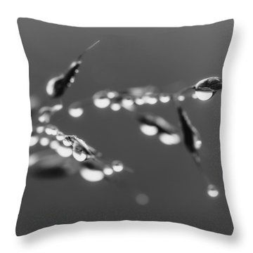 Whispers From The Heart Throw Pillow