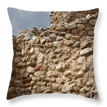 Throw Pillow featuring the photograph Whispers From The Past by Phyllis Denton