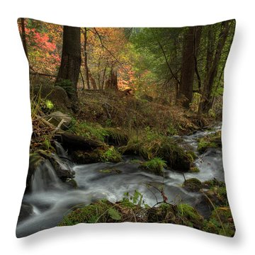 Whispers Of Autumn Throw Pillow by Sue Cullumber