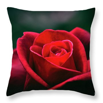 Throw Pillow featuring the photograph Whispers Of Passion by Linda Lees