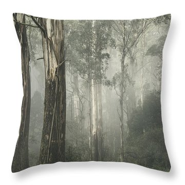 Whist Throw Pillow by Andrew Paranavitana