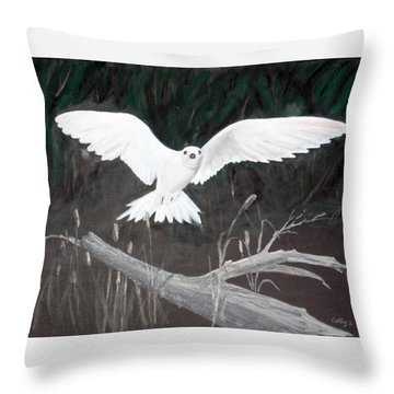White Tern Throw Pillow by Catherine Swerediuk