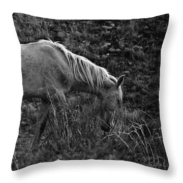 Throw Pillow featuring the photograph White 47 by Catherine Sobredo