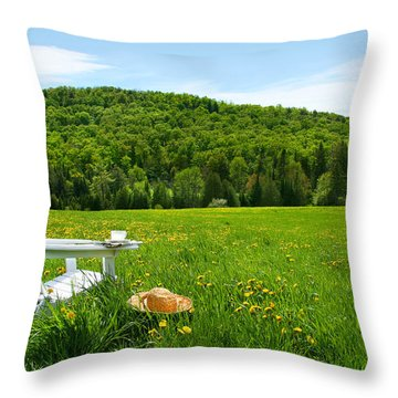 White Adirondack Chair In A Field Of Tall Grass Throw Pillow by Sandra Cunningham