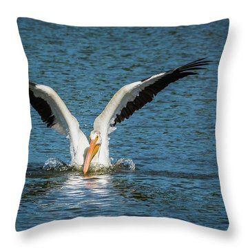 White American Pelican Throw Pillow
