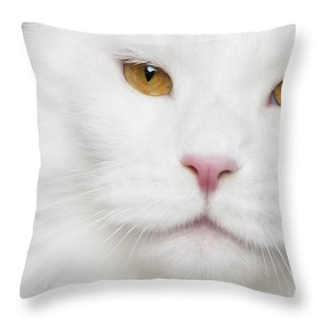 White And Ogange Throw Pillow