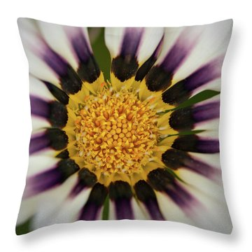 White And Purple Zinnia With Yellow Throw Pillow