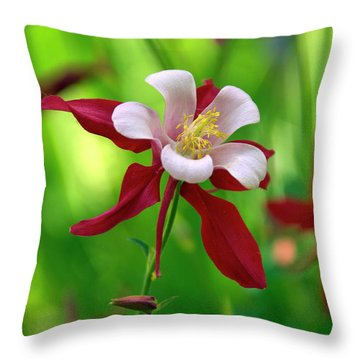White And Red Columbine  Throw Pillow by James Steele