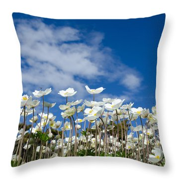 White Anemones At Blue Sky Throw Pillow