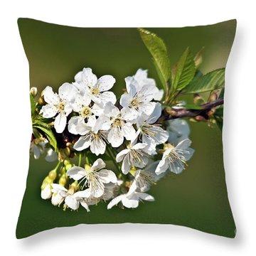 White Apple Blossoms Throw Pillow