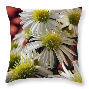 Throw Pillow featuring the photograph White Aster by Richard Stephen