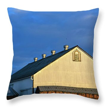 White Barn At Golden Hour Throw Pillow