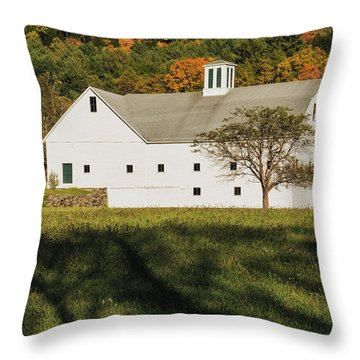 White Barn In Color Throw Pillow