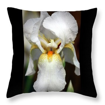 Throw Pillow featuring the photograph White Bearded Iris 2 by Sheila Brown