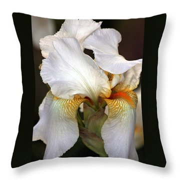 Throw Pillow featuring the photograph White Bearded Iris by Sheila Brown