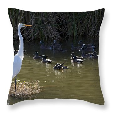 Throw Pillow featuring the photograph White Beauty by Phyllis Denton