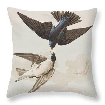 White-bellied Swallow Throw Pillow by John James Audubon