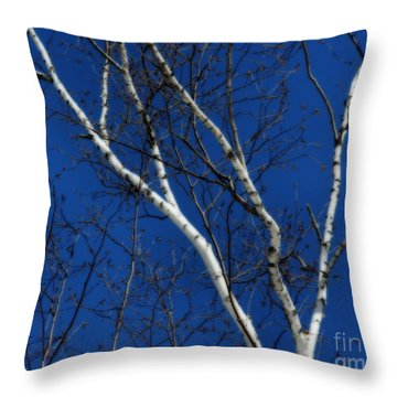 White Birch Blue Sky Throw Pillow
