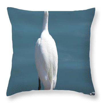 White Bird On The Dock Throw Pillow by Loriannah Hespe