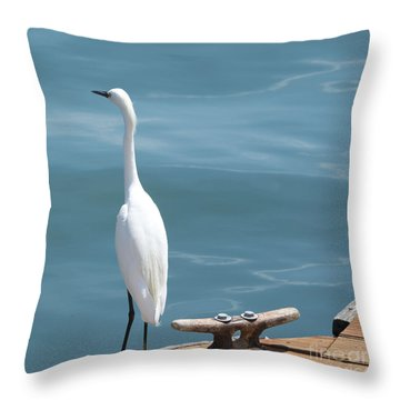 White Bird Standing On Wood Dock Throw Pillow by Loriannah Hespe