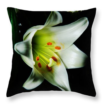 Throw Pillow featuring the photograph White Blooming Lily by Dennis Dame