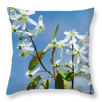 Throw Pillow featuring the photograph White Blossom by Cristina Stefan