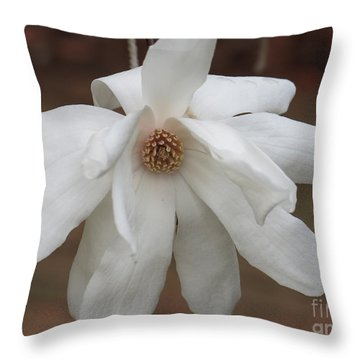 Throw Pillow featuring the photograph White Blossom by Rod Ismay